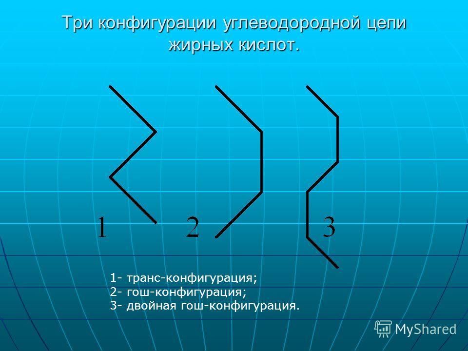 Три конфигурации углеводородной цепи жирных кислот. 1- транс-конфигурация; 2- гош-конфигурация; 3- двойная гош-конфигурация.