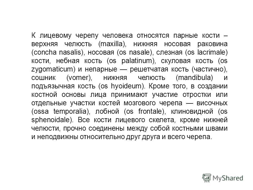 К лицевому черепу человека относятся парные кости – верхняя челюсть (maxilla), нижняя носовая раковина (соncha nasalis), носовая (оs nasale), слезная (оs lacrimale) кости, небная кость (оs palatinum), скуловая кость (оs zygomaticum) и непарные решетч