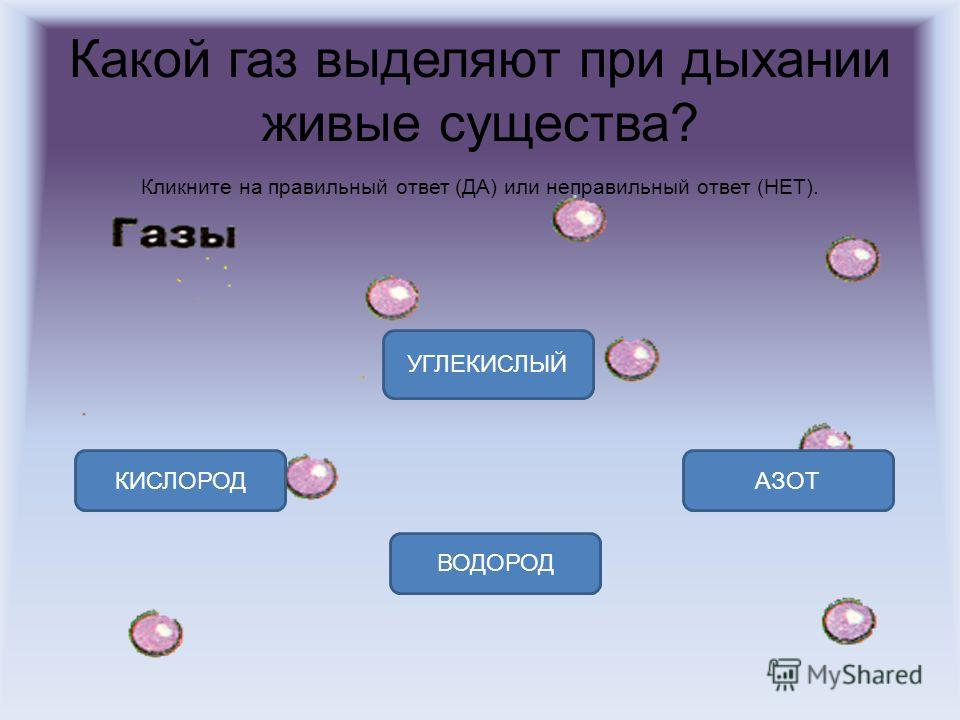 Какой газ выделяют при дыхании живые существа? Кликните на правильный ответ (ДА) или неправильный ответ (НЕТ). УГЛЕКИСЛЫЙ КИСЛОРОДАЗОТ ВОДОРОД