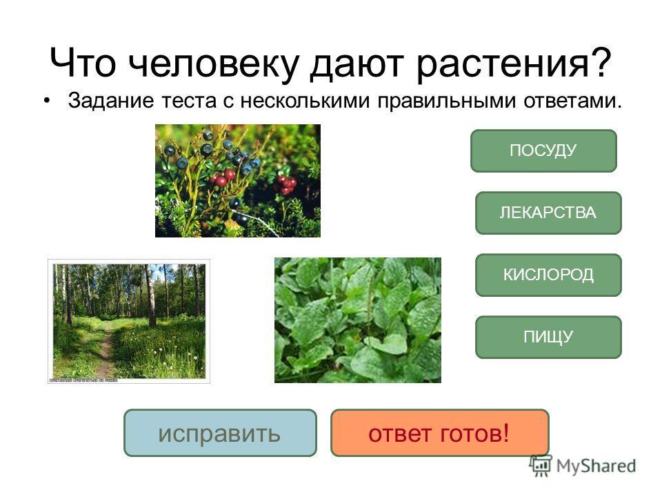 Что человеку дают растения задание