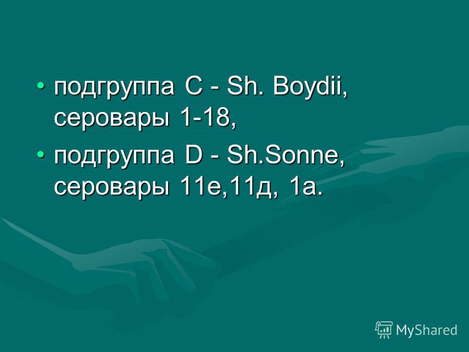 подгруппа С - Sh. Boydii, серовары 1-18,подгруппа С - Sh. Boydii, серовары 1-18, подгруппа D - Sh.Sonne, серовары 11е,11д, 1а.подгруппа D - Sh.Sonne, серовары 11е,11д, 1а.