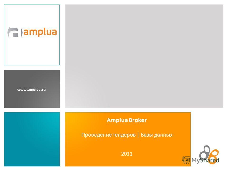 www.amplua.ru Amplua Broker Проведение тендеров | Базы данных 2011