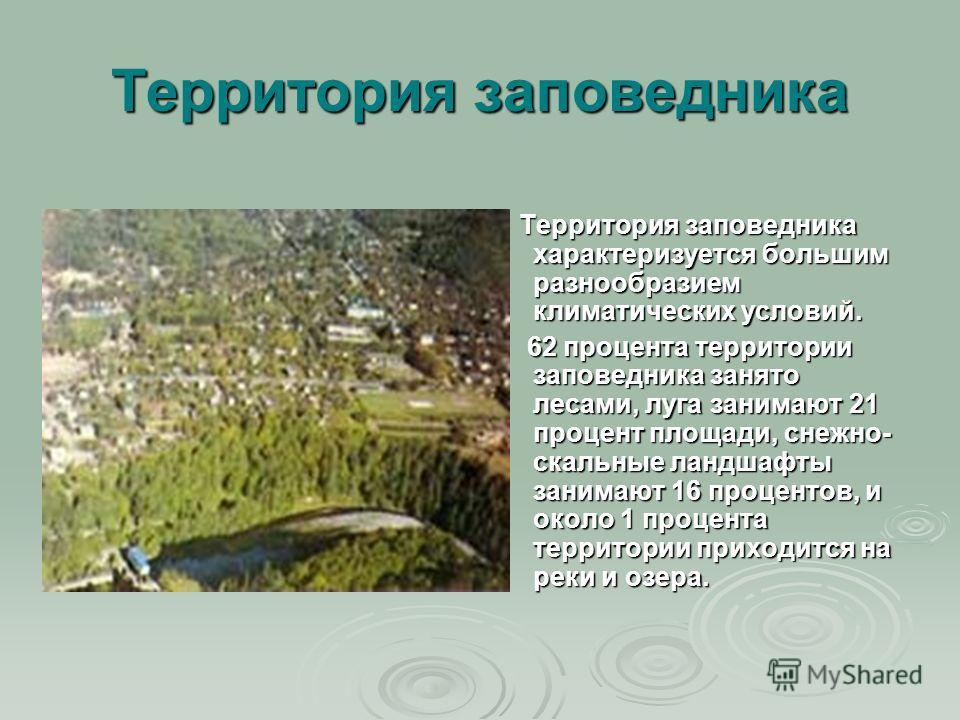 Территория заповедника Территория заповедника характеризуется большим разнообразием климатических условий. Территория заповедника характеризуется большим разнообразием климатических условий. 62 процента территории заповедника занято лесами, луга зани