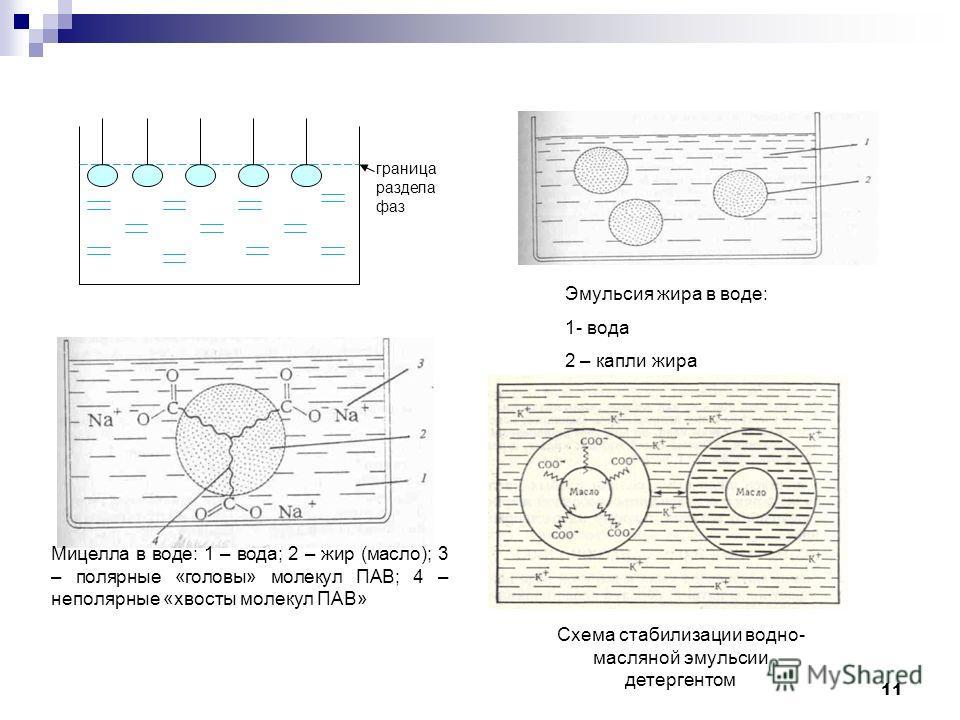 Эмульсия жира в воде: 1- вода 2 – капли жира граница раздела фаз Мицелла в воде: 1 – вода; 2 – жир (масло); 3 – полярные «головы» молекул ПАВ; 4 – неполярные «хвосты молекул ПАВ» Схема стабилизации водно- масляной эмульсии детергентом 11