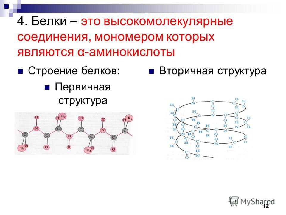4. Белки – это высокомолекулярные соединения, мономером которых являются α-аминокислоты Строение белков: Первичная структура Вторичная структура 12