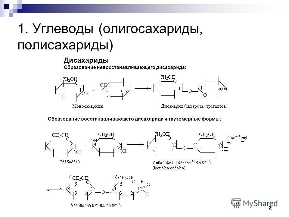 Дисахариды Образование невосстанавливающего дисахарида: Моносахариды Дисахарид (сахароза, трегалоза) Образование восстанавливающего дисахарида и таутомерные формы: 1. Углеводы (олигосахариды, полисахариды) 2