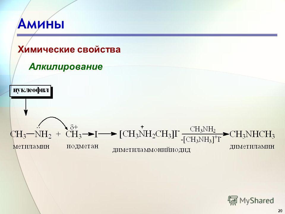 20 Амины Химические свойства Алкилирование