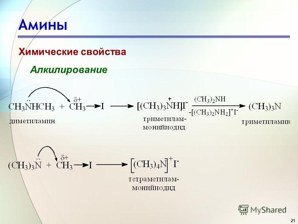 21 Амины Химические свойства Алкилирование
