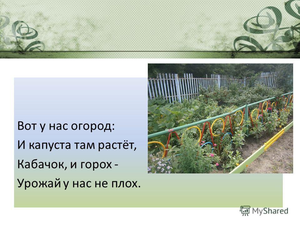 Вот у нас огород: И капуста там растёт, Кабачок, и горох - Урожай у нас не плох.