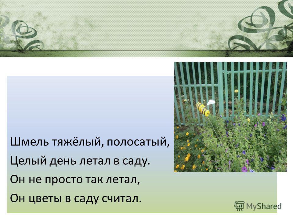 Шмель тяжёлый, полосатый, Целый день летал в саду. Он не просто так летал, Он цветы в саду считал.