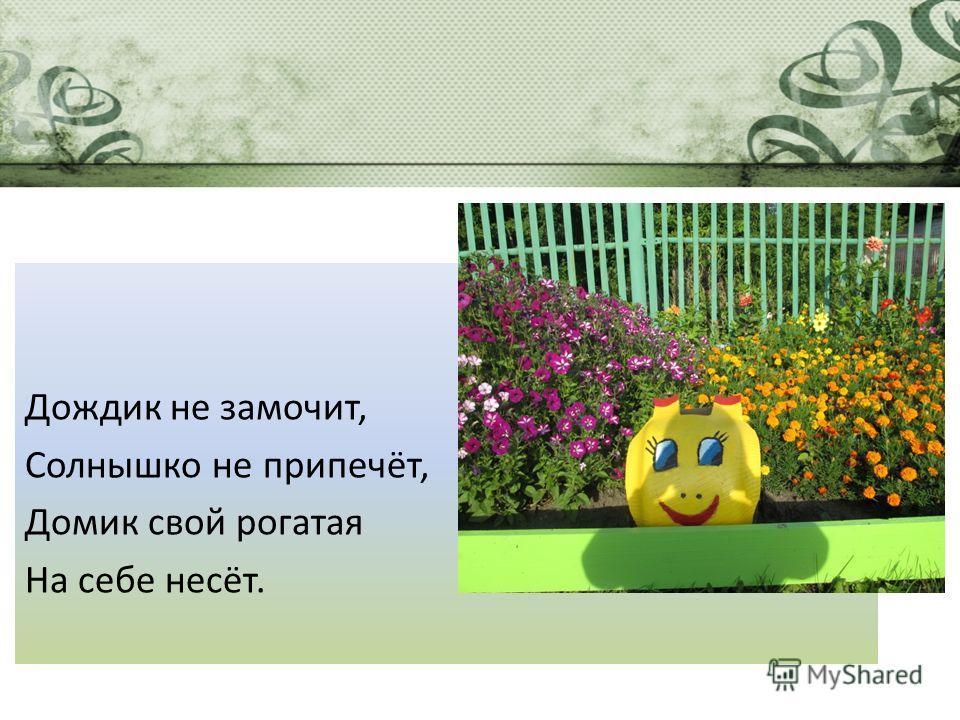Дождик не замочит, Солнышко не припечёт, Домик свой рогатая На себе несёт.
