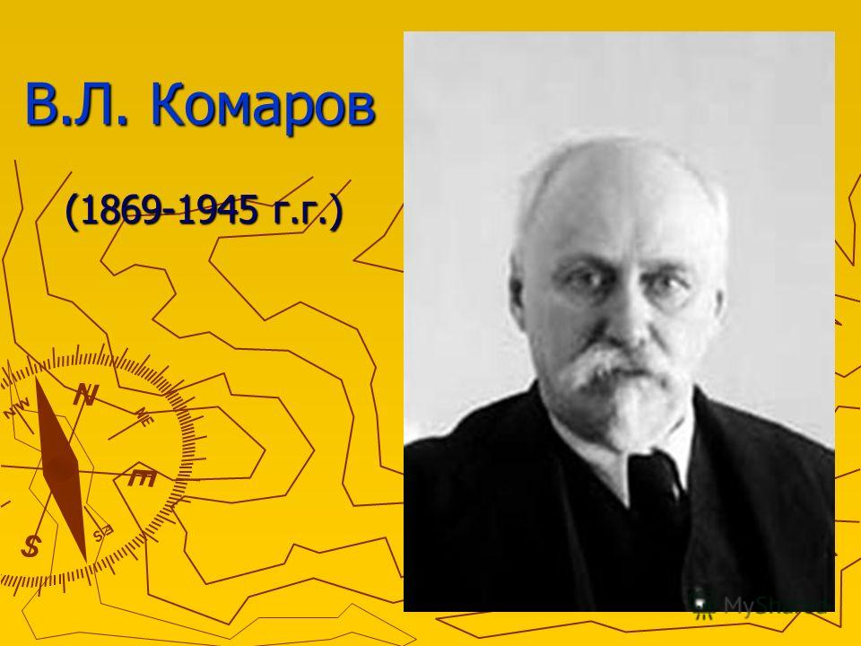В.Л. Комаров (1869-1945 г.г.)