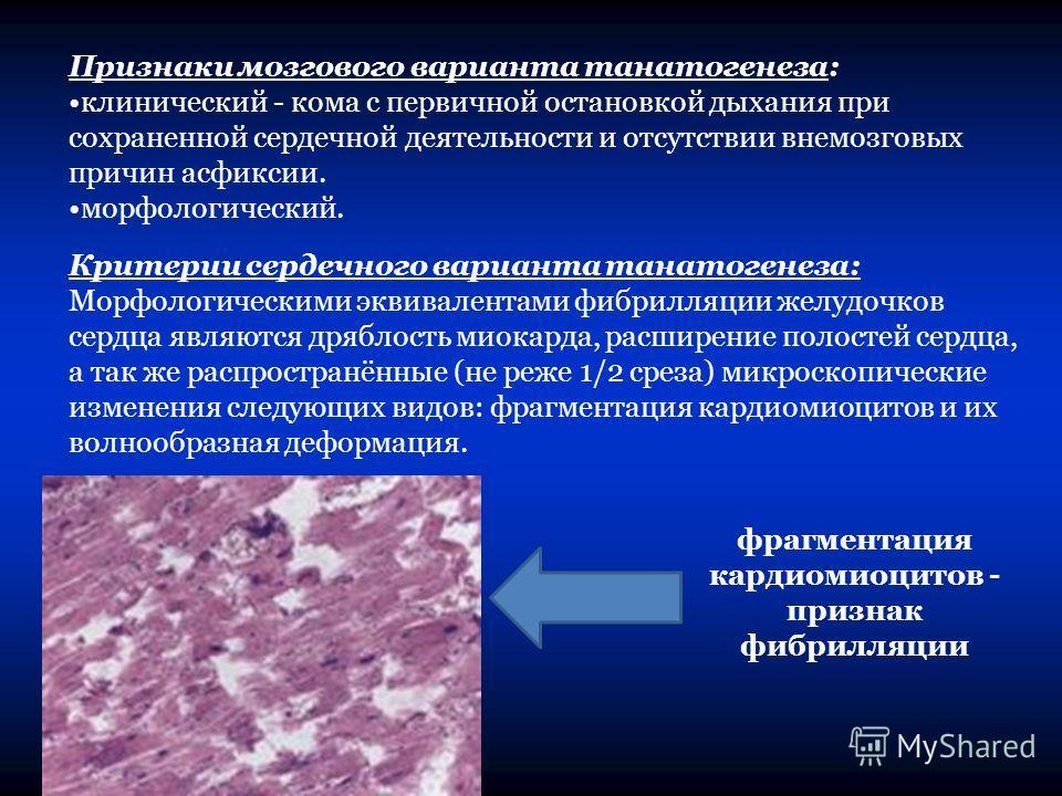 Признаки мозгового варианта танатогенеза: клинический - кома с первичной остановкой дыхания при сохраненной сердечной деятельности и отсутствии внемозговых причин асфиксии. морфологический. Критерии сердечного варианта танатогенеза: Морфологическими
