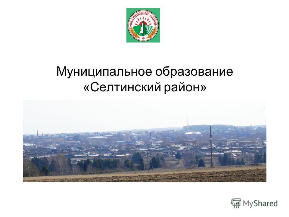Муниципальное образование «Селтинский район»
