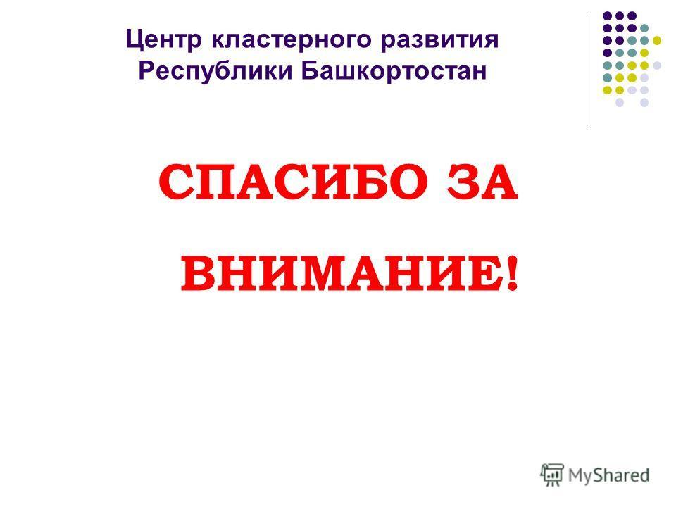 Центр кластерного развития Республики Башкортостан СПАСИБО ЗА ВНИМАНИЕ!