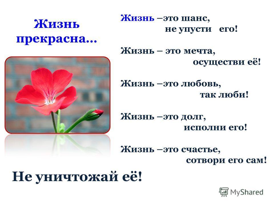 Жизнь прекрасна… Жизнь –это шанс, не упусти его! Жизнь – это мечта, осуществи её! Жизнь –это любовь, так люби! Жизнь –это долг, исполни его! Жизнь –это счастье, сотвори его сам! Не уничтожай её!