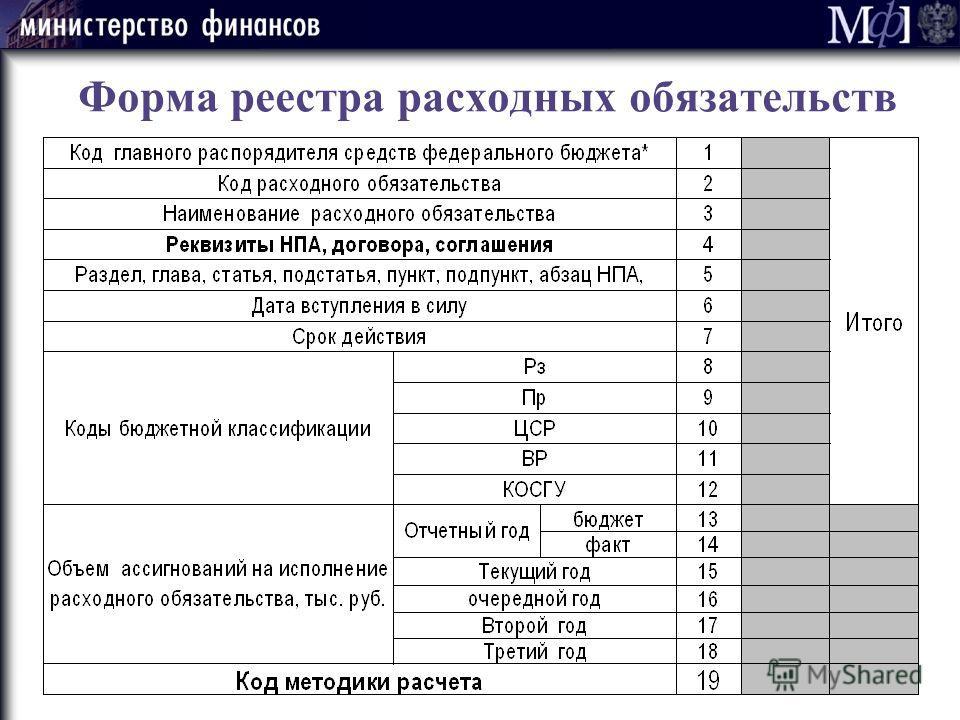 8 Форма реестра расходных обязательств