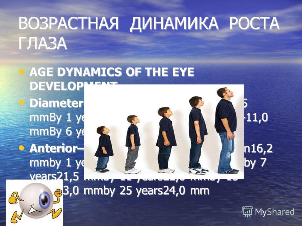 ВОЗРАСТНАЯ ДИНАМИКА РОСТА ГЛАЗА AGE DYNAMICS OF THE EYE DEVELOPMENT AGE DYNAMICS OF THE EYE DEVELOPMENT Diameter of the corneaNewborn9,0-9,5 mmBy 1 year10,0-10,5 mm2-3 years10,5-11,0 mmBy 6 years11,5 mm Diameter of the corneaNewborn9,0-9,5 mmBy 1 yea