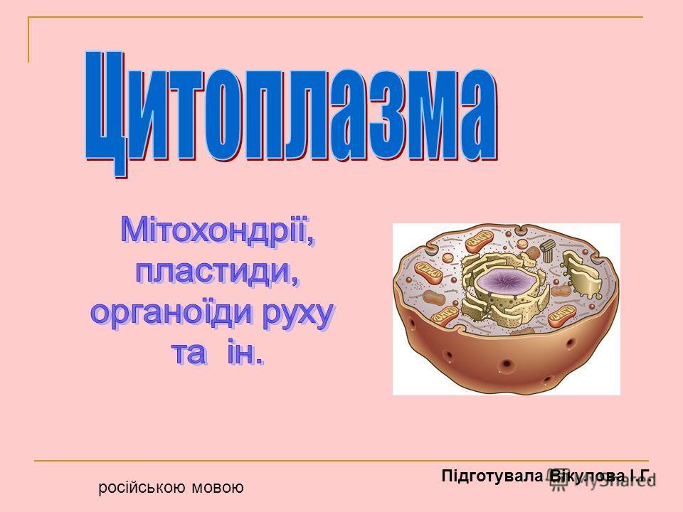 російською мовою Підготувала Вікулова І.Г.