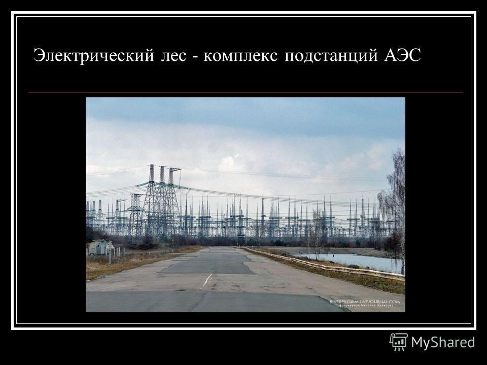 Электрический лес - комплекс подстанций АЭС
