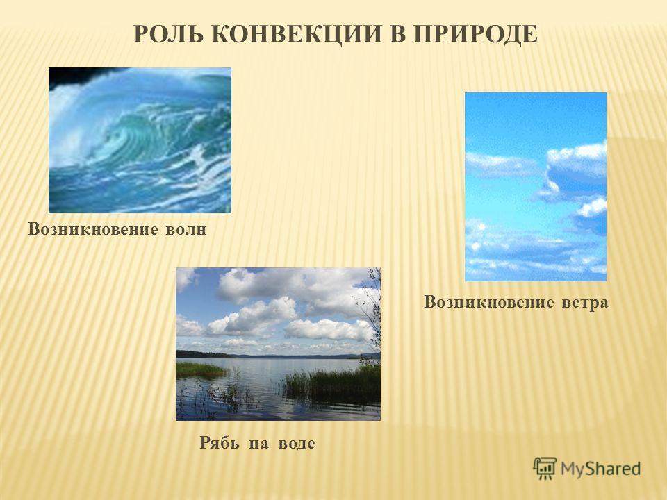 Возникновение волн Возникновение ветра Рябь на воде РОЛЬ КОНВЕКЦИИ В ПРИРОДЕ