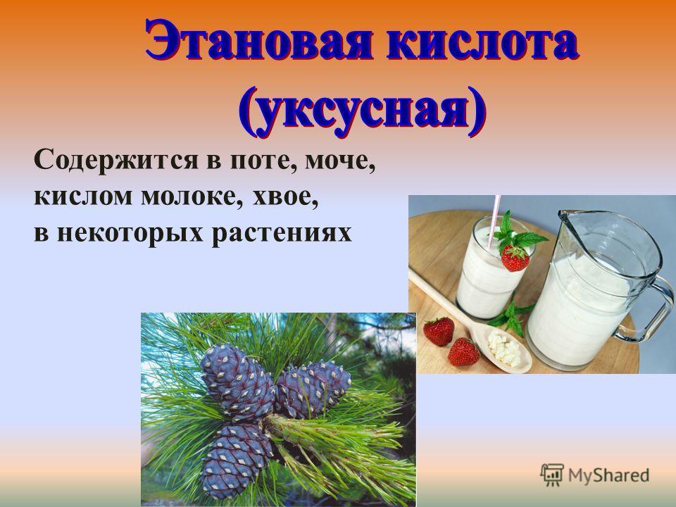 Содержится в поте, моче, кислом молоке, хвое, в некоторых растениях