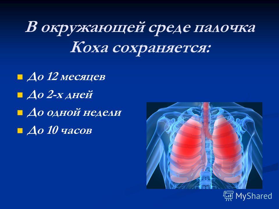 В окружающей среде палочка Коха сохраняется: До 12 месяцев До 2-х дней До одной недели До 10 часов
