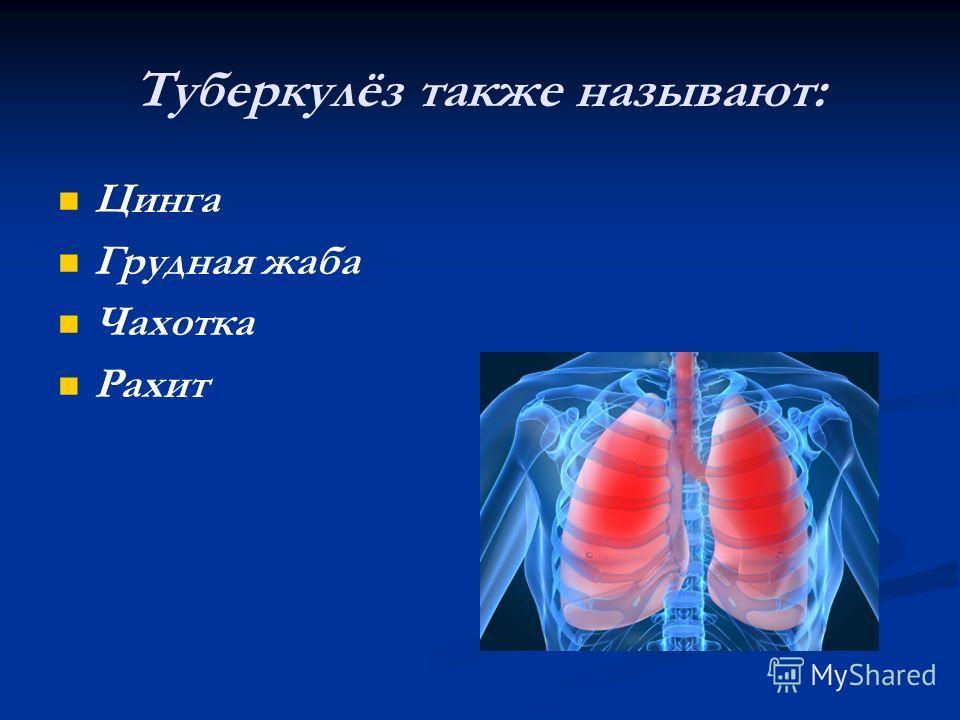 Туберкулёз также называют: Цинга Грудная жаба Чахотка Рахит