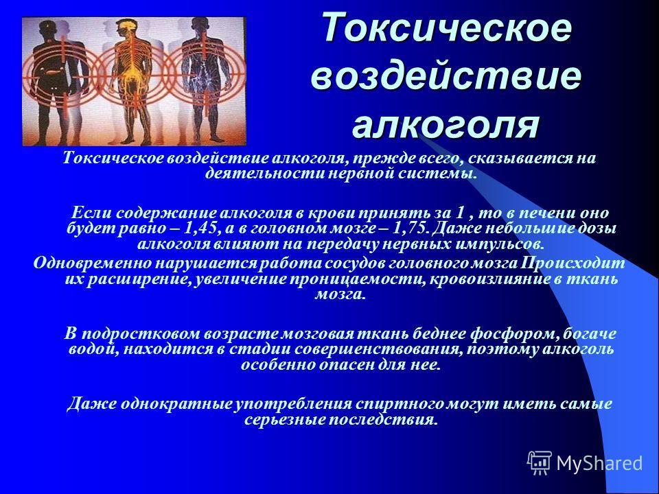 Токсическое воздействие алкоголя Токсическое воздействие алкоголя, прежде всего, сказывается на деятельности нервной системы. Если содержание алкоголя в крови принять за 1, то в печени оно будет равно – 1,45, а в головном мозге – 1,75. Даже небольшие