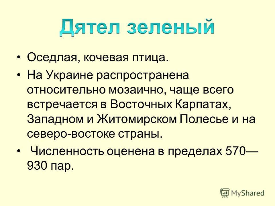 Оседлая, кочевая птица. На Украине распространена относительно мозаично, чаще всего встречается в Восточных Карпатах, Западном и Житомирском Полесье и на северо-востоке страны. Численность оценена в пределах 570 930 пар.