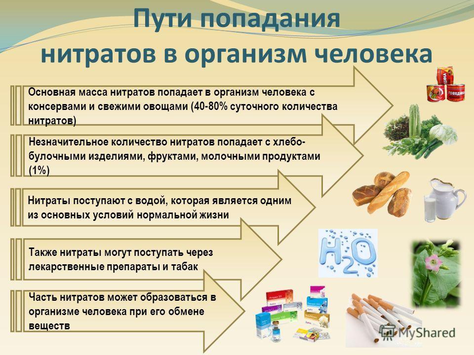 Пути попадания нитратов в организм человека Основная масса нитратов попадает в организм человека с консервами и свежими овощами (40-80% суточного количества нитратов) Незначительное количество нитратов попадает с хлебо- булочными изделиями, фруктами,