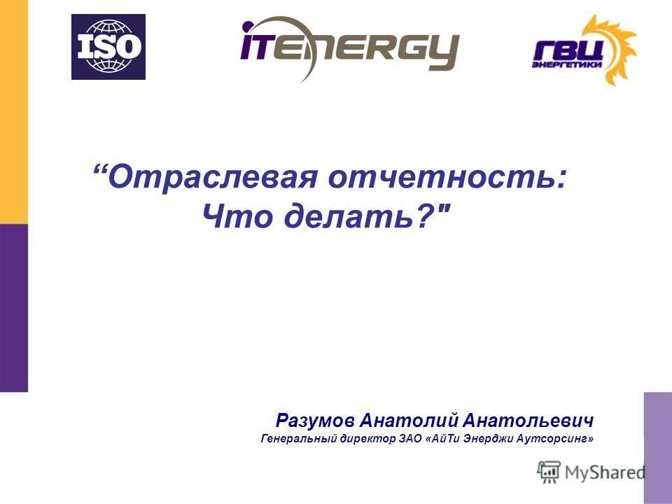 Отраслевая отчетность: Что делать? Разумов Анатолий Анатольевич Генеральный директор ЗАО «АйТи Энерджи Аутсорсинг»