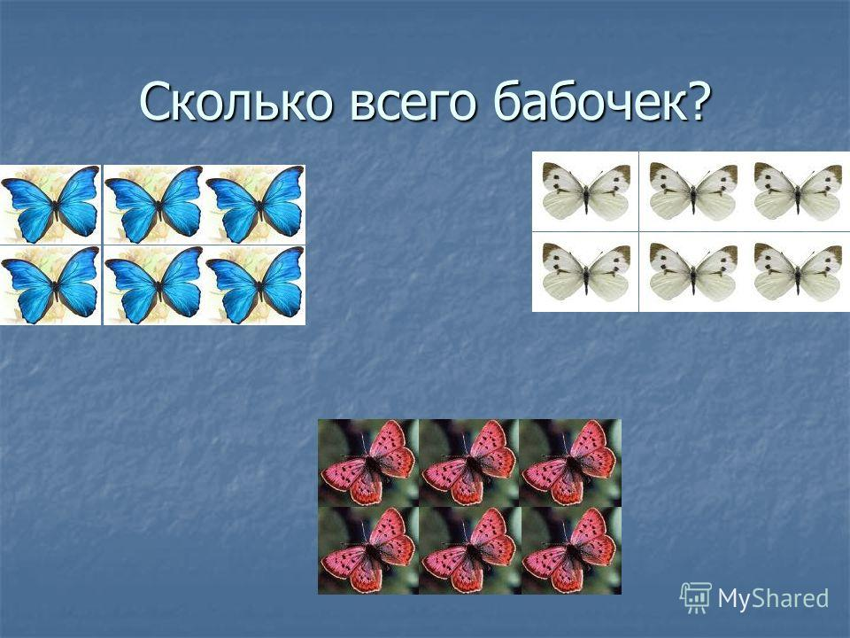 Сколько всего бабочек?