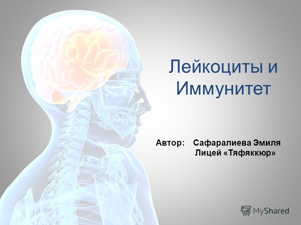 Лейкоциты и Иммунитет Автор: Сафаралиева Эмиля Лицей «Тяфяккюр»