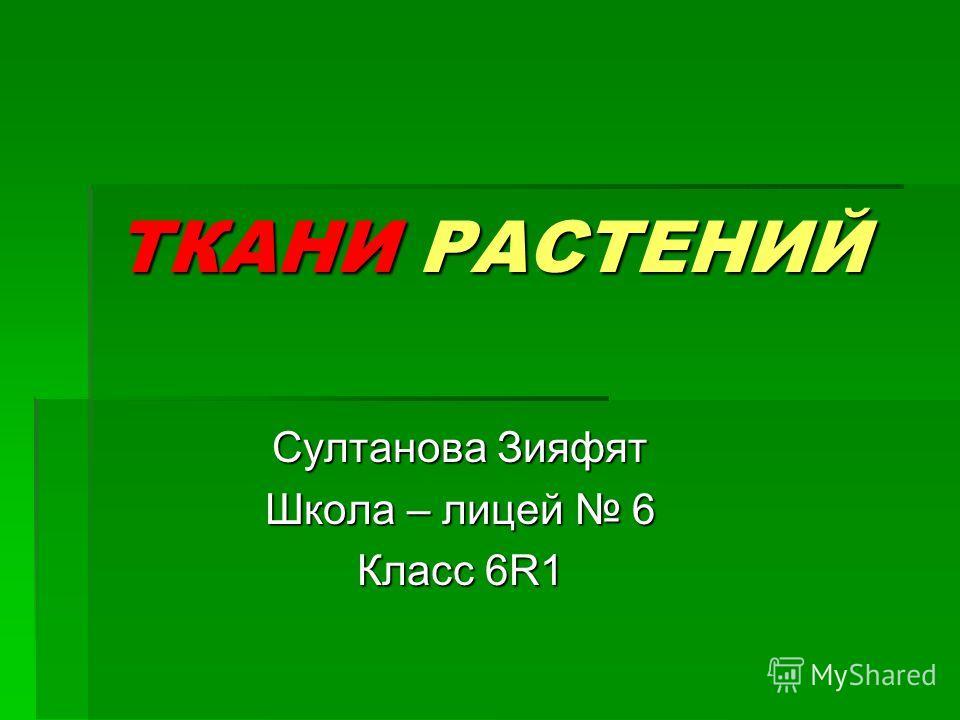 ТКАНИ РАСТЕНИЙ Султанова Зияфят Школа – лицей 6 Класс 6R1