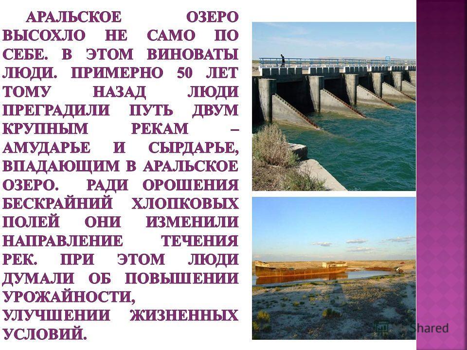За последние 20 лет уровень озера снизился на 17 метров. 2012