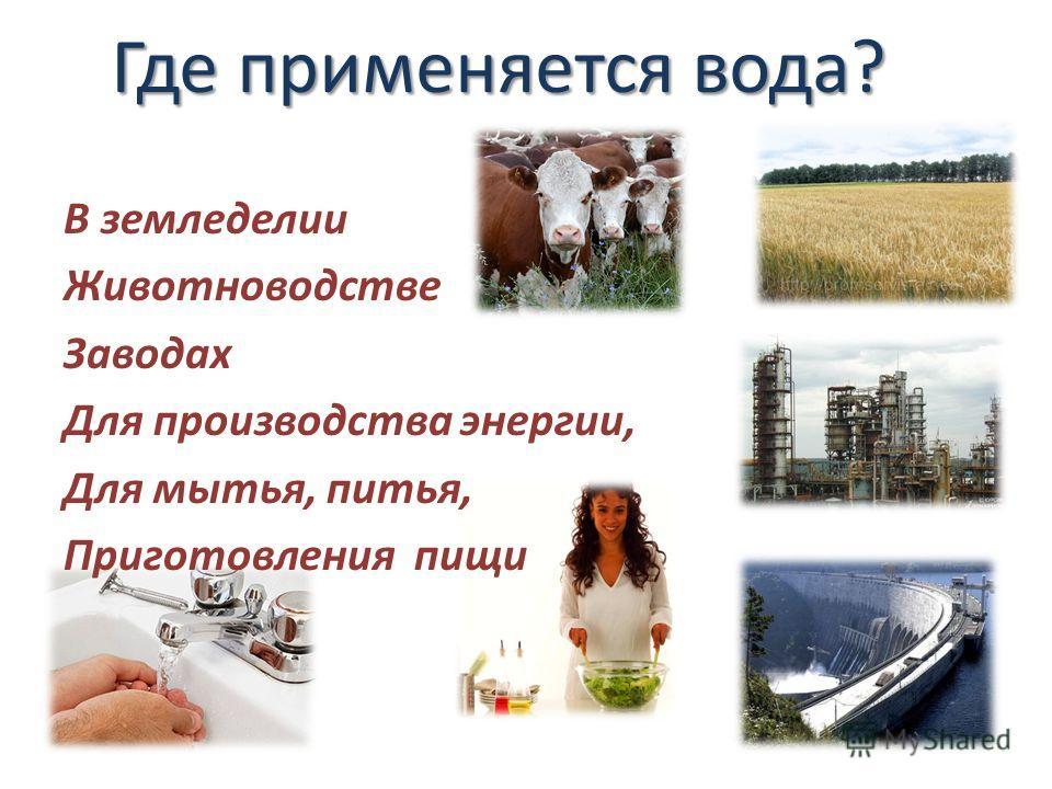 Где применяется вода? В земледелии Животноводстве Заводах Для производства энергии, Для мытья, питья, Приготовления пищи