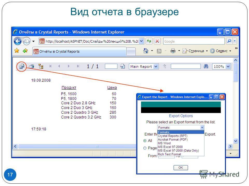 Вид отчета в браузере 17