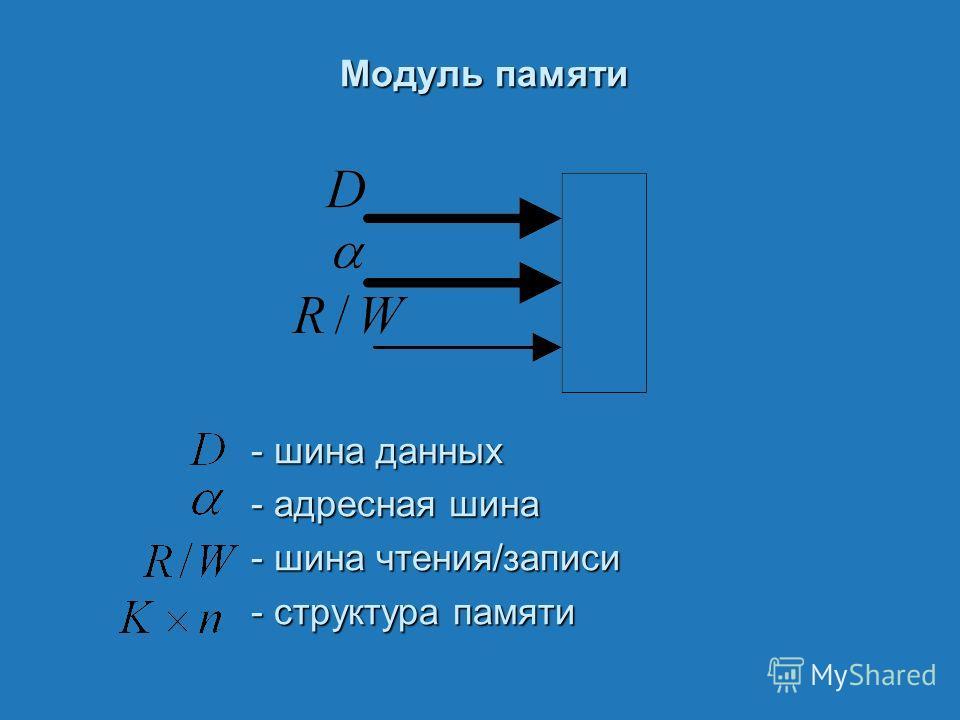 Модуль памяти - шина данных - адресная шина - шина чтения/записи - структура памяти