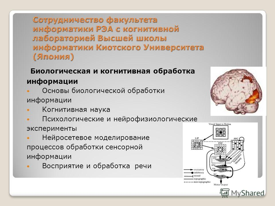 Биологическая и когнитивная обработка информации Основы биологической обработки информации Когнитивная наука Психологические и нейрофизиологические эксперименты Нейросетевое моделирование процессов обработки сенсорной информации Восприятие и обработк