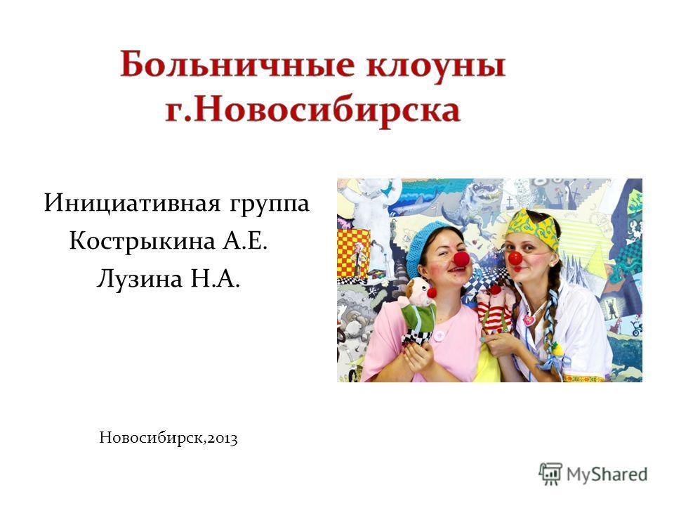 Инициативная группа Кострыкина А.Е. Лузина Н.А. Новосибирск,2013