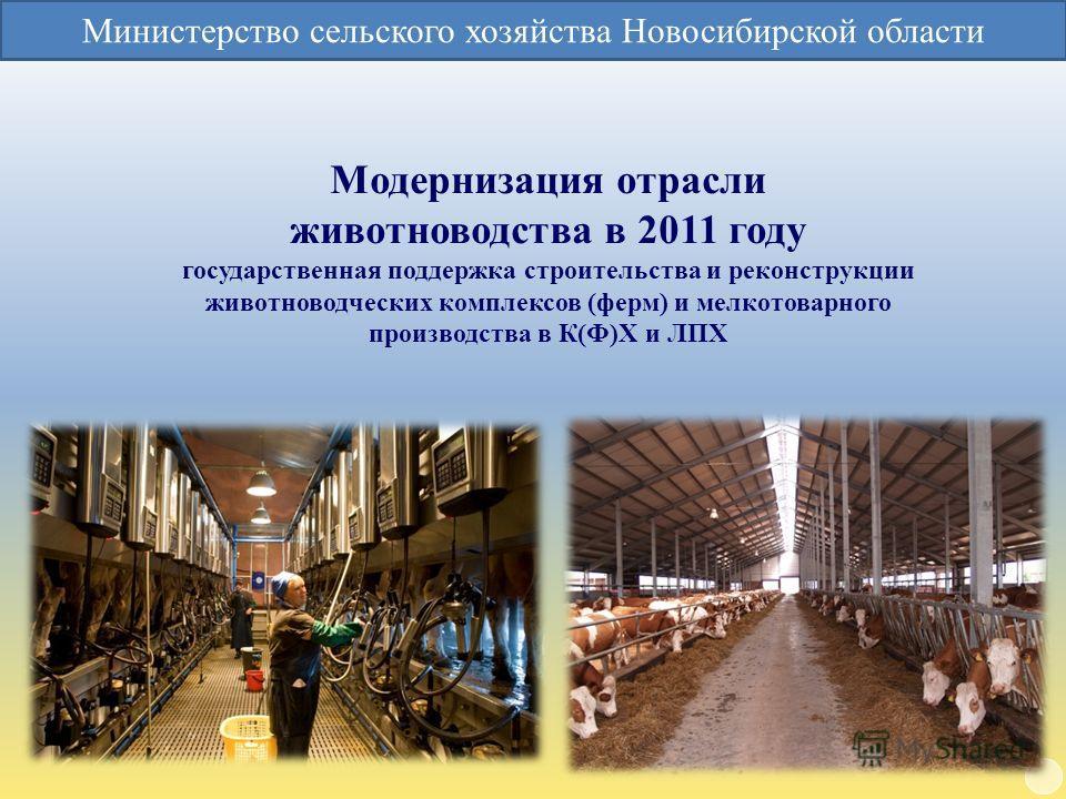 Модернизация отрасли животноводства в 2011 году государственная поддержка строительства и реконструкции животноводческих комплексов (ферм) и мелкотоварного производства в К(Ф)Х и ЛПХ Министерство сельского хозяйства Новосибирской области