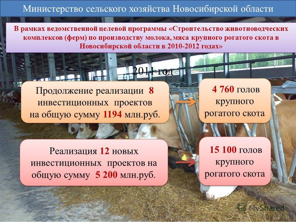 Продолжение реализации 8 инвестиционных проектов на общую сумму 1194 млн.руб. Продолжение реализации 8 инвестиционных проектов на общую сумму 1194 млн.руб. 4 760 голов крупного рогатого скота Реализация 12 новых инвестиционных проектов на общую сумму