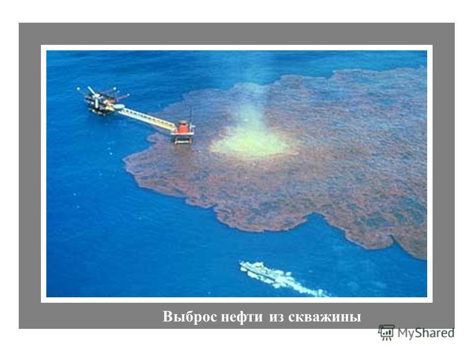 IXTOC I Exploratory Well Выброс нефти из скважины