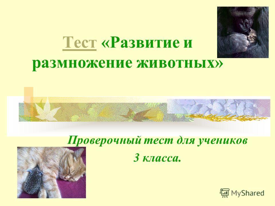 ТестТест «Развитие и размножение животных» Проверочный тест для учеников 3 класса.