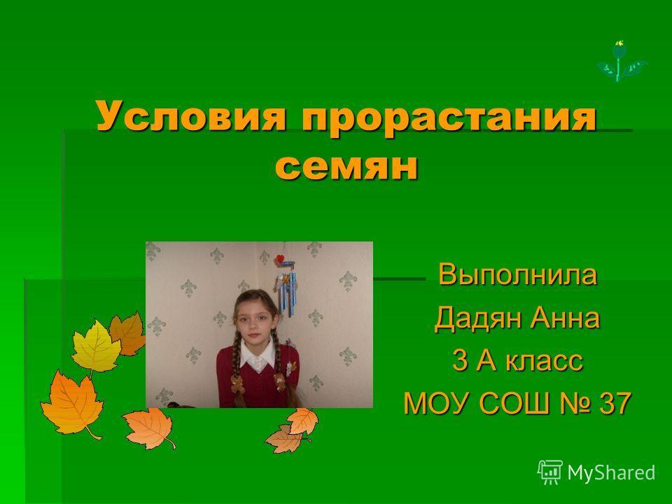 Условия прорастания семян Выполнила Дадян Анна 3 А класс МОУ СОШ 37