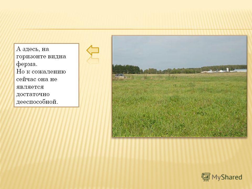 А здесь, на горизонте видна ферма. Но к сожалению сейчас она не является достаточно дееспособной.