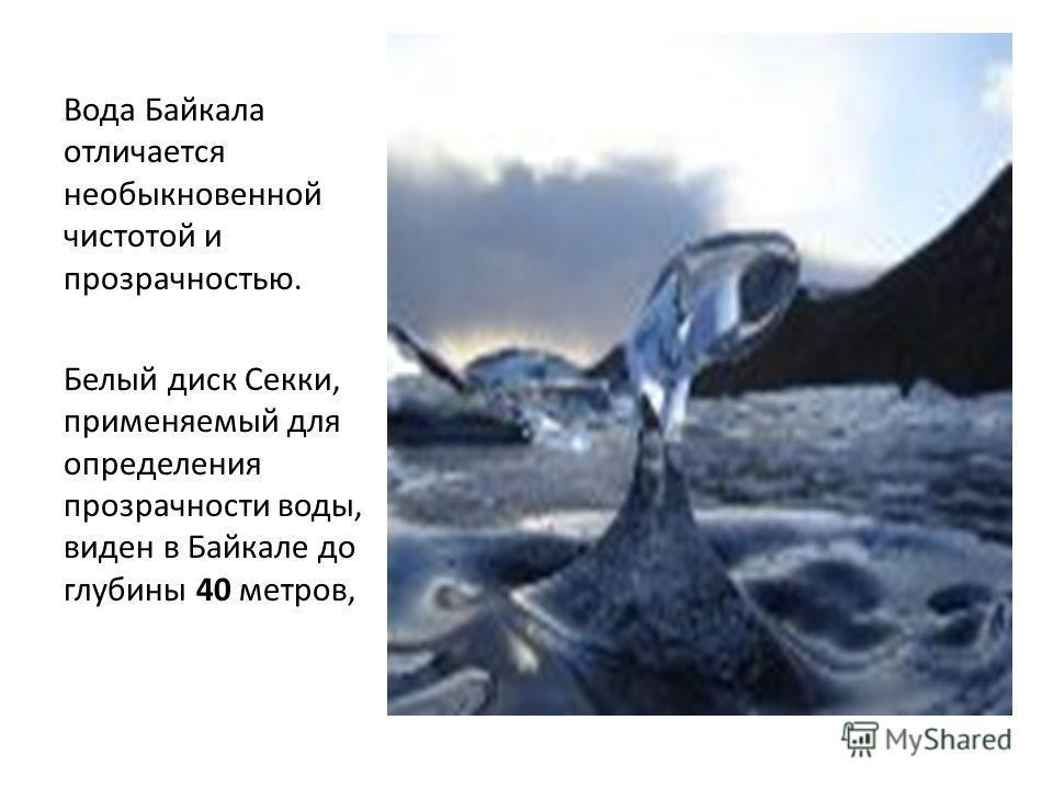 Вода Байкала отличается необыкновенной чистотой и прозрачностью. Белый диск Секки, применяемый для определения прозрачности воды, виден в Байкале до глубины 40 метров,