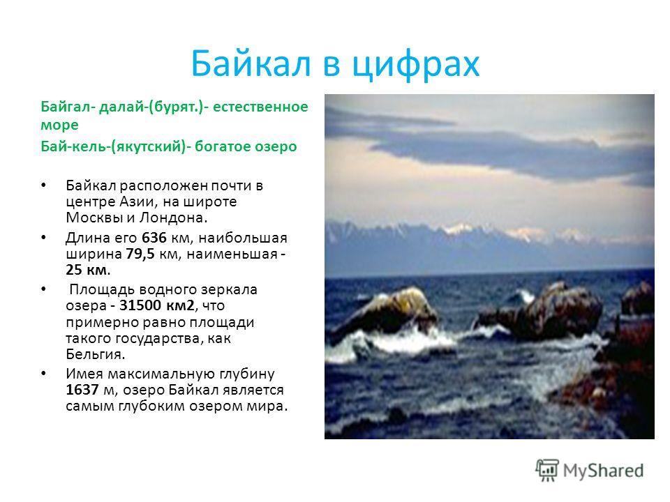 Байкал в цифрах Байгал- далай-(бурят.)- естественное море Бай-кель-(якутский)- богатое озеро Байкал расположен почти в центре Азии, на широте Москвы и Лондона. Длина его 636 км, наибольшая ширина 79,5 км, наименьшая - 25 км. Площадь водного зеркала о