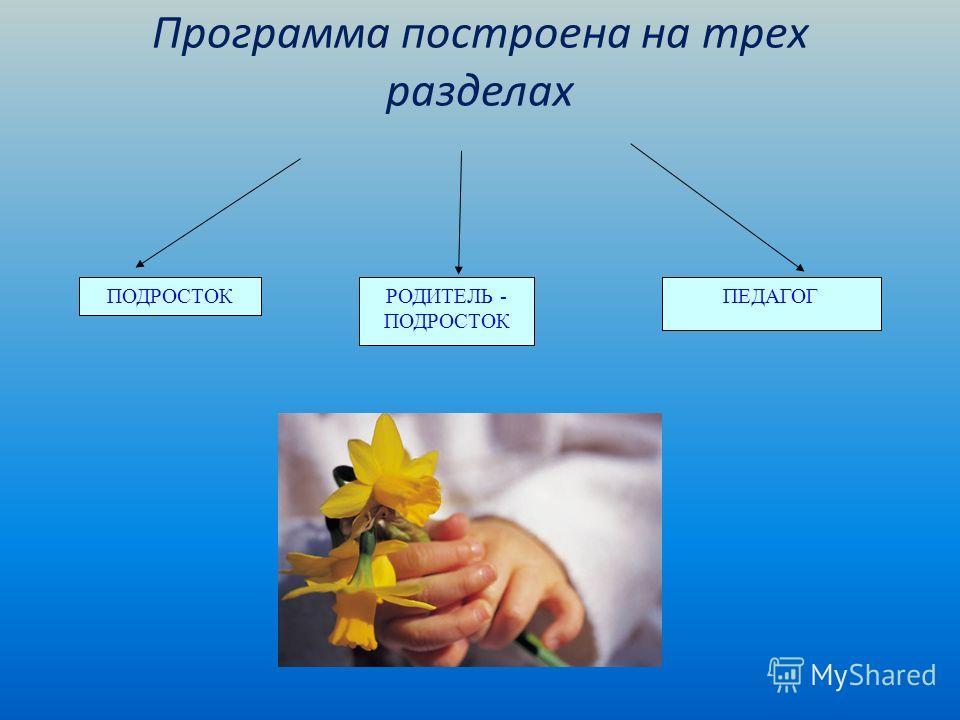 Программа построена на трех разделах ПОДРОСТОКРОДИТЕЛЬ - ПОДРОСТОК ПЕДАГОГ